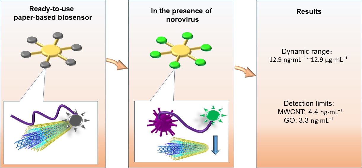 norovirus research paper Introduction norovirus is currently recognized as the most important non-bacterial pathogen causing gastroenteritis it is believed that majority of gastroenteritis.